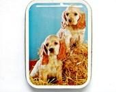 Kitsch Vintage Dog Tin