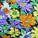 Vintage 60s Fluorescent Daisy Flower Fabric Lime Green Tangerine Orange Purple Black Super Mod Floral Light Weight Mid Century Curtain CBF