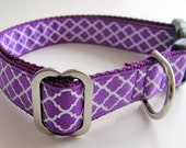 Radiant Orchid Dog Collar Quatrefoil - Martingale or Buckle Style