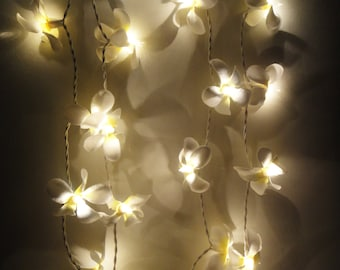 35 Globes White Frangipani Fairy Lights String Accent Floral Party Patio Wedding Floor Table or Hanging Gift Home Decoration 4m.