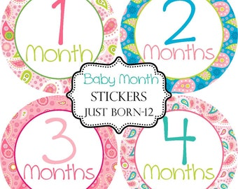 Girls Preppy Paisley, Monthly Baby Stickers Make Great Baby Shower Gifts..Bonus Just Born Sticker Included
