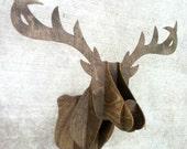 Wooden Deer Bust