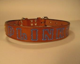 Xtra Large Light Blue Dog Collar
