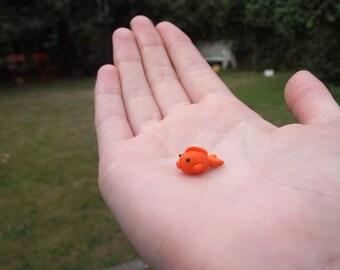 Teeny Tiny Goldfish