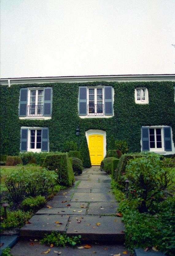 8 x 10 Print, Yellow Door, Hancock Park, Los Angeles Architecture, Classic, Spanish Mansion, Ivy, Landscape, Home Photography 35mm Film, Art