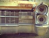 Cadillac Vintage Car Junkyard Caddy Automobile Abandoned Photographic Art Print 8X12