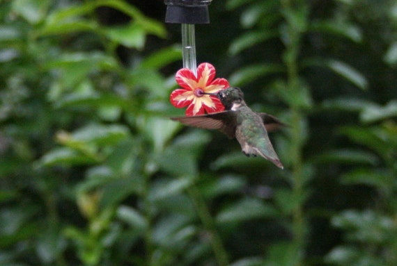 Flower Hummingbird Feeder Hummingbird Feeder Stoppers