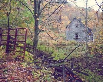 Long Forgotten - Photographic Print - Mountains, Mist, Appalachia, West Virginia, Snowshoe, Mountain, Autumn, Fall, Landscape, Decor, Green,