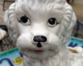 Ceramic Poodle Planter