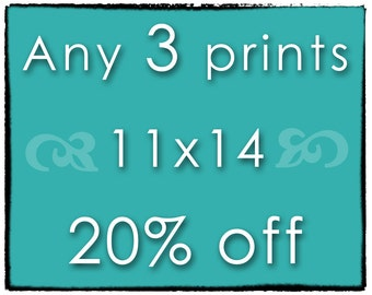 DISCOUNT SET - Any 3 Prints - Three 11x14 Photographs of Your Choice - Save 20%