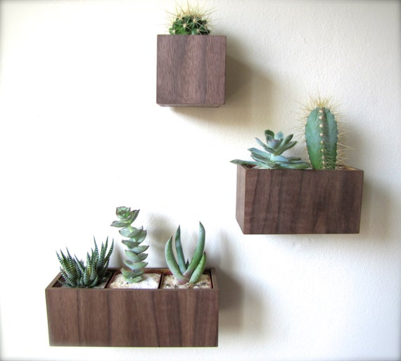 set of three wall planters hanging planters in by thewoodybeckers. Black Bedroom Furniture Sets. Home Design Ideas