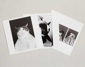 Set of 3 postcards