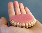 Denture Compact