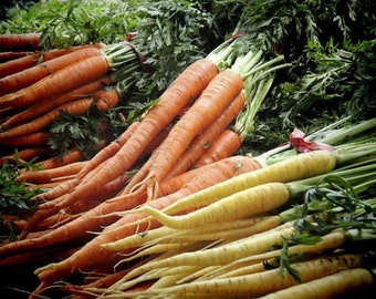 Fresh and Healthy  (food) vegetable photograph  - Kitchen Art Decor - Wall decor - Carrot - Root Vegetable - Farmer's Market Art