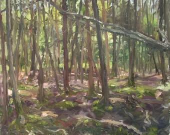 Original Landscape Oil Painting-Woods at Whipple Dam