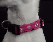 Pretty In Pink KOUTURE Adjustable Dog Collar-Ready To Ship