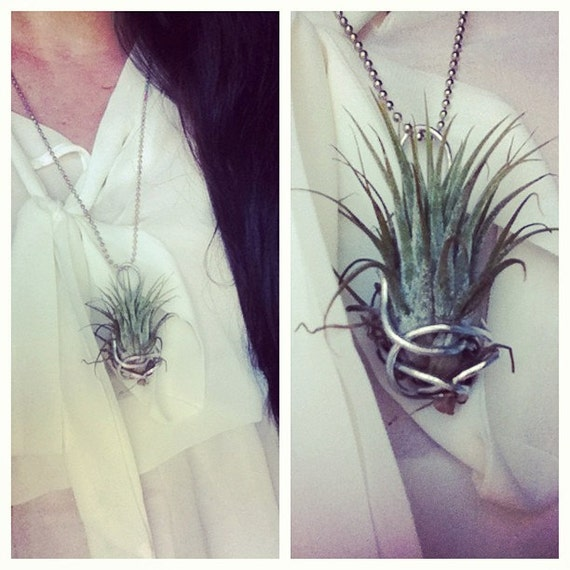 Wire-wrapped AIR PLANT Necklace -Silver- -Industrial- -Living Jewelry- -Custom- -One of a kind-