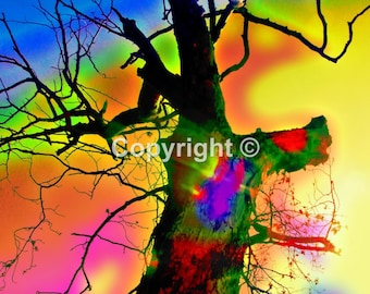 Tree No2 - Print Run of 100
