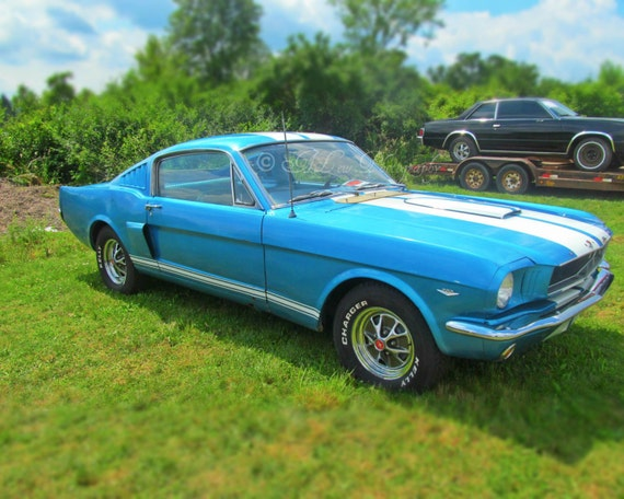 Mustang Fastback Photography Print Ford Automobile Muscle Car Fine Art Classic Vintage Blue White