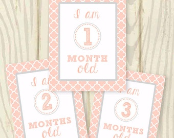 Monthly Age Milestone Baby Signs- GIRL - print at home - instant download