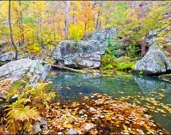 Nature Photography - Cedar Creek, Fine Art, Petit Jean State Park, Fall, Autumn