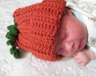 Pumpkin Hat (114)