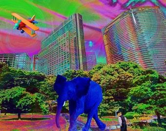"""Elephant with Boy, 10"""" X 8"""", print, by Artist Carolyn Furin."""