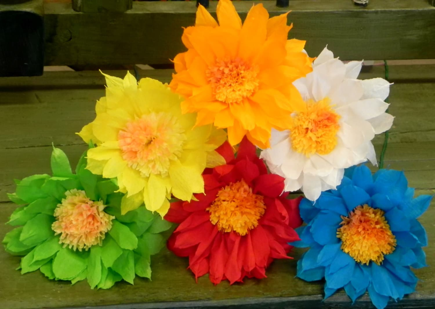 Mexican Paper Flowers Set of 6 Multicolor We Make