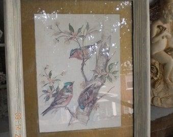 Vintage Birds Water color Print
