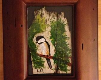 Chickadee on birch