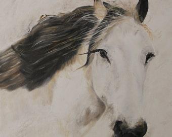 """Horse Oil Painting, Horses, Portrait - """"Horse Portrait"""" (24"""" x 24"""")"""