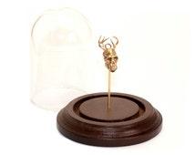 Animal Oddities Hybrid Animal Skull Glass Dome Display