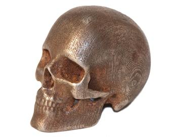 Human Skull Replica from CT Scan Steel Skull Replica 3D Printed Skulls