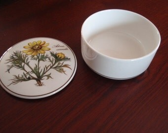 """Villeroy & Boch Trinket Jewelry Keepsake Box with lid Botanica 4"""" round Collectible Home Decor  L1414"""