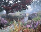 Autumn in the Walled Garden.  14cm square greetings card, supplied packaged with matching white envelope.  Blank inside.