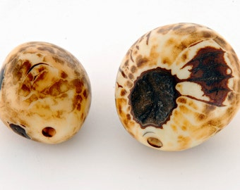 Natural whole Amazonian polished tagua nut bead with natural markings variable, size 30-40mm, hole 3-4mm (ba150)