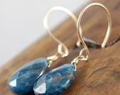 Deep Blue - Apatite Gemstone Earrings STERLING SILVER