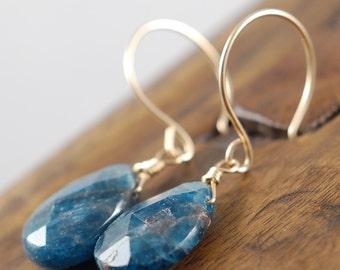 Deep Blue - Apatite Gemstone Earrings