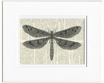 dragonfly II dictionary page print