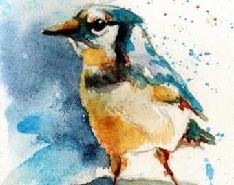 Blue Jay painting watercolor bird ART PRINT