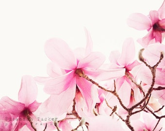 Floral photo, pink magnolia photo, floral decor, flower photography, dusky pink flowers, shabby chic decor, nature photography - Sweet pink