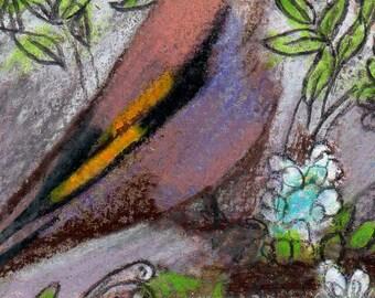 original aceo drawing art card zentangle bird colorful design