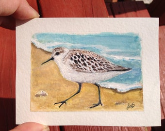 Sandpiper Sea Bird Painting - Original Watercolor artwork - Childs room - ACEO size