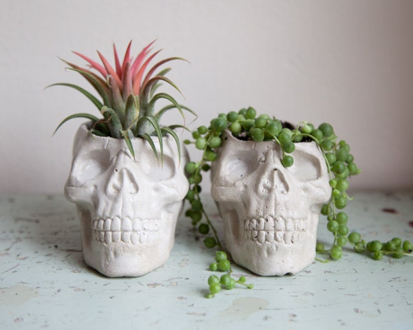 Skull Planter Cement Plant Pot Home Decor Kitsch Planter