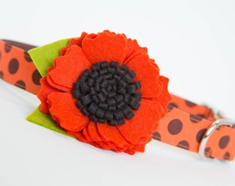 Dog Collar with Flower - Autumn Orange Blossom Polka Dots