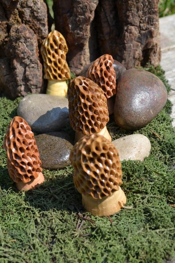 Morel mushroom carvings