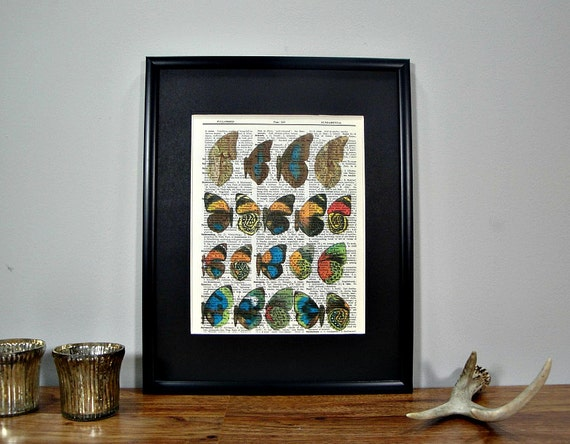 FRAMED 11x14 - Butterfly Wing Exhibit - Book Page Dictionary Print
