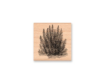 ROSEMARY-Wood Mounted Rubber Stamp (MCRS 25-30)