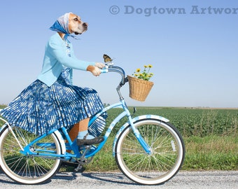 The Hitchhiker, large original photograph of a boxer dog wearing vintage dress on a bicycle and giving a ride to a monarch butterfly