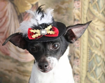 Black color   mini  hat with   feather and   red bow  for dog or cat